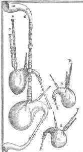 Dudelsäcke in Michael Praetorius, Syntagma musicum, 1620.